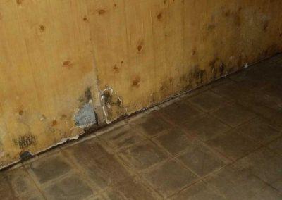 Mold Removal Douglas County