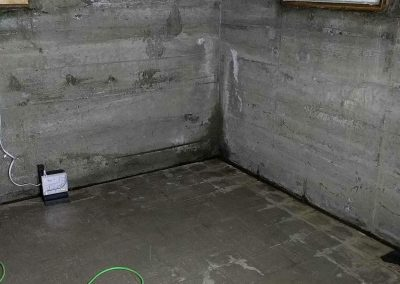 Mold Treatment Lane County
