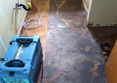 Water Damage Floor Drying Eugene